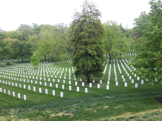 På Arlington Cementary ligger det flere tusen amerikanske soldater og offiserer begravet.